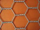 High quality electro Galvanized Hexagonal Wire Mesh