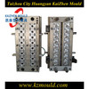Professional design plastic 16 cavity PET preform mould with hot runner