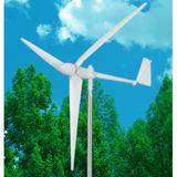 300W windmill