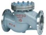 General Service Valve Range Check Valves Bolted Bonnet