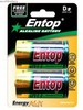 D SIZE ULTRA HEAVY DUTY ALKALINE BATTERY