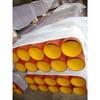 EPOXY COATED EN877 cast iron pipes