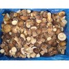 2013 China New Crop Boletus Edulis(whole)