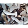 2013 China New Crop Boletus Edulis(half cut)