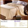 Silk Duvet/Quilt for Luxury Hotels