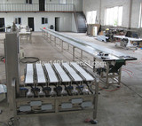 Small Bag, Small Pouch High Speed Six Lane Checkweigher