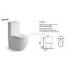 Soft-Close One Piece Modern White Ceramic Toilet