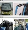City Bus/Taxibus/Urban Bus