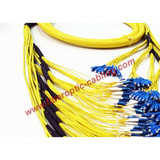 SC singlemode trunk fiber optic patch cord