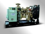 Diesel Generating Set(TC345)