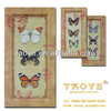 latest design cheap butterfly boderless wooden photo frame