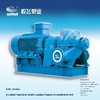ESD series Double Suction Split Casing Pump with IEC Motor