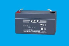 Sealed valve-regulated lead acid battery  6M1.2 6V