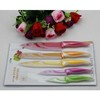 5pcs coating kitchen knife set  .  kitchen  knife set, non-stick knife