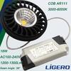 18W Aluminum LED AR111 Lamp COB Light Source AC100-240V