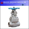 Forged Stainless Steel F304 1500Lb Socket Welded SW J61W Globe Valve