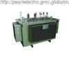 B.02_22kV Oil-immersed Distribution Transformer