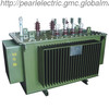 B.04_ Amorphous Alloy Oil-immersed Distribution Transformer