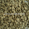 Yunnan top quality green coffee bean