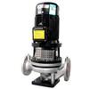 Vertical SS pump