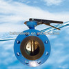 Double flange butterfly valve with pin