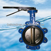Pinless butterfly valve with a through shaft