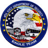 USA eagle embroidery emblem