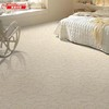 Clouds—High Quality Tufted Carpet in Novel Design and Nice Color