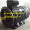 explosion proof three-phase asynchronous motor