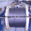 Elevator Wire Rope 8*19S (6mm---16mm)