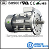 Electric bicycle small ac electrical motor