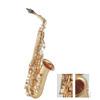 Alto Saxophone (QSA-Y1L)
