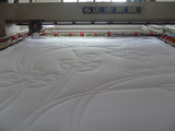 2012 Hot Selling Feather Quilt