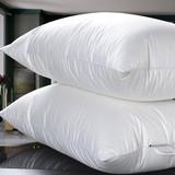 Decorative Feather Cushion