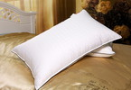 Feather Pillow Inner