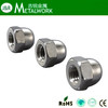 Hex Cap Nuts DIN1587