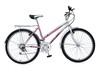 Mountain Bicycle (MTB-013)