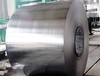 Stainless Steel Coil (cold rolled or hot rolled)