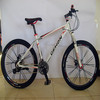 Trend Edition Mountain Bike/Bicycle (GF-MTB-C011)