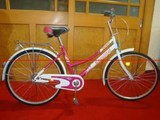Folding Bicycle, Peerless Folding Bike (HD-9)