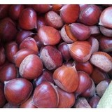 2017 new crops Chinese fresh chestnut hot for sale