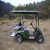 Hot Sale! Cross-Country Golf Carts (48V 2.2KW) Electric/Petrol