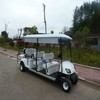White Sightseeing Golf Cart (48V 3KW) (JDGF-E503B) Electric/ Gasoline