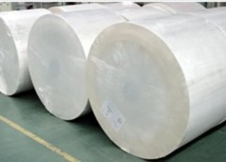 Paper for Paper Cup (P-12) /PE Coated Paper /PE Paper