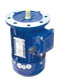 220V 380V Three Phase AC Asynchronous Motor