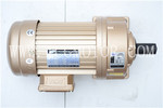 Electric Geared Motors with Foot Mounted Geared Motor