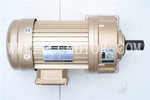 Foot Mounted Geared Motor 3 Phase 220/380V 50/60Hz