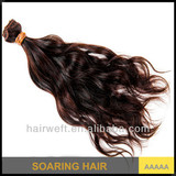 Professional Hair factory diectly supply high quality human hair weft extensions natural wave unprocessed virgin brazilian hair