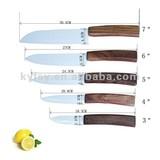 Ceramic zirconia knife set C series peeler with Arcylic knife holder