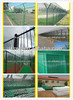 PVC coated, electro galvanized and hot-dipped galvanized Chain link fence